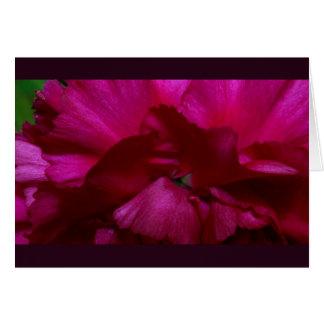 Red Petals Card