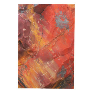 Red Petrified wood detail, Arizona Wood Wall Decor