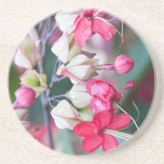Red Pink and White Tropical Flowers Coaster