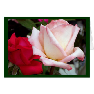 Red Pink Roses Note Cards