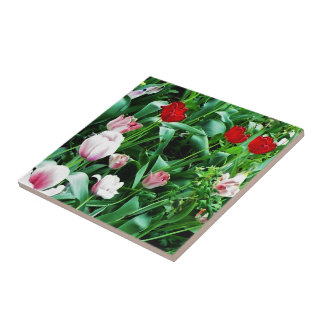Red & Pink Tulips Pictures Spoon Rest Small Square Tile