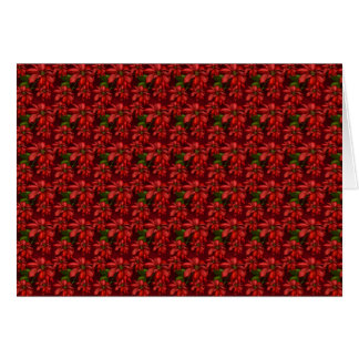Red Poinsetta Card