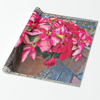 Red Poinsettia Christmas Flower Photography Wrapping Paper