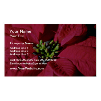Red Poinsettia Closeup flowers Business Card Template
