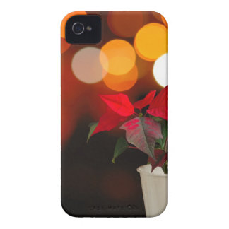 Red Poinsettia flower iPhone 4 Cover