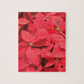 Red  Poinsettia Jigsaw Puzzle