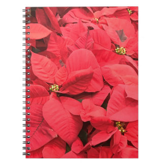Red  Poinsettia Notebook