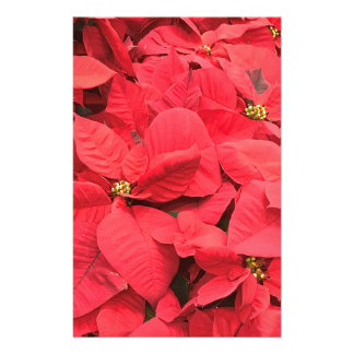 Red  Poinsettia Stationery