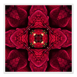 Red Poinsettias Abstract 9 Poster