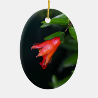 Red pomegranate flower (Punica granatum) on a tree Ceramic Oval Decoration