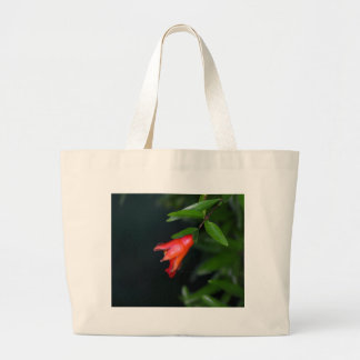 Red pomegranate flower (Punica granatum) on a tree Large Tote Bag