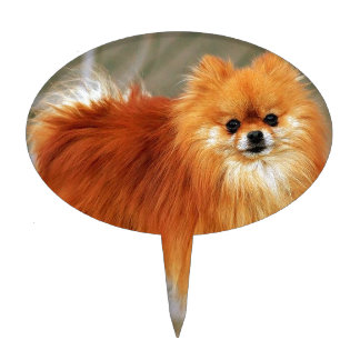 Red Pomeranian Cake Toppers