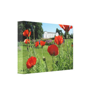 Red Poppies at Kew Gardens Canvas Prints