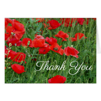 Red Poppies Floral Thank You Notes