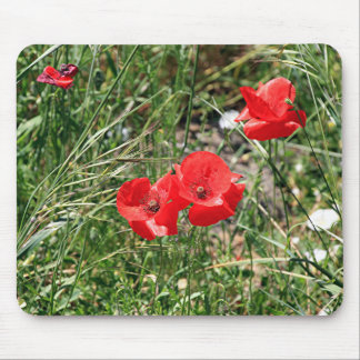 Red poppies on El Camino Mouse Pad