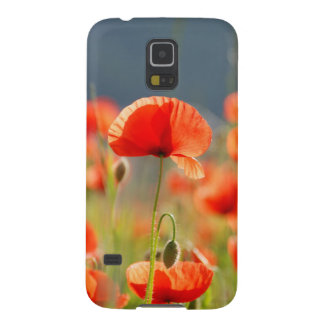 Red Poppies Poppy Flowers Blue Sky Case For Galaxy S5