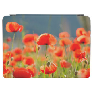 Red Poppies Poppy Flowers  Blue Sky iPad Air Cover