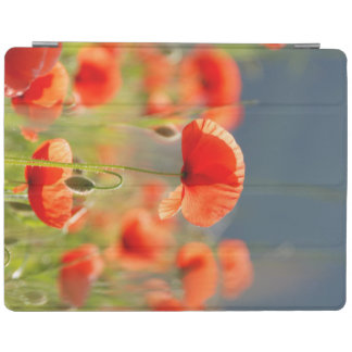 Red Poppies Poppy Flowers  Blue Sky iPad Cover