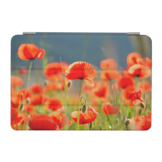Red Poppies Poppy Flowers  Blue Sky iPad Mini Cover
