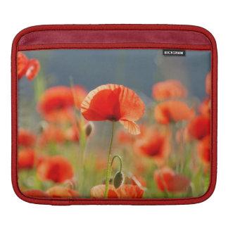 Red Poppies Poppy Flowers  Blue Sky iPad Sleeve