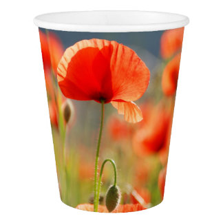 Red Poppies Poppy Flowers  Blue Sky Paper Cup