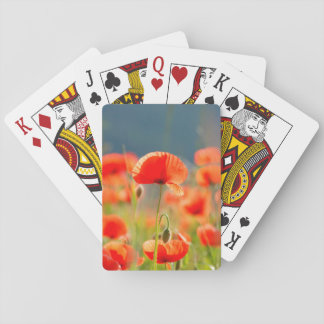 Red Poppies Poppy Flowers Blue Sky Playing Cards