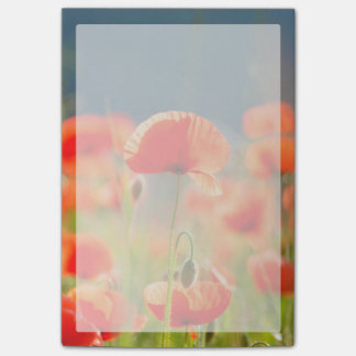 Red Poppies Poppy Flowers Blue Sky Post-it Notes