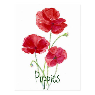 Red Poppies - Watercolor Postcard