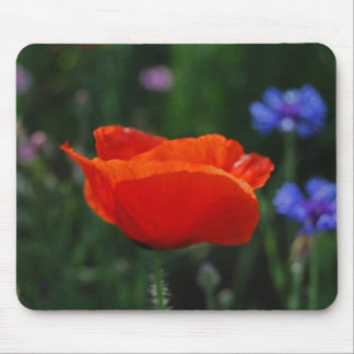 Red poppy and meaning mousepad