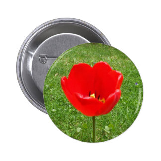 Red Poppy-Canada Remembrance Day Pinback Buttons