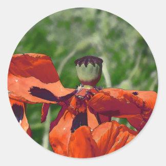 Red poppy faded round sticker