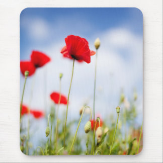 Red Poppy Flowers Mouse Pads