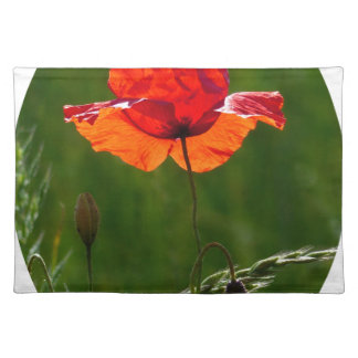 Red poppy in summer 02 placemat