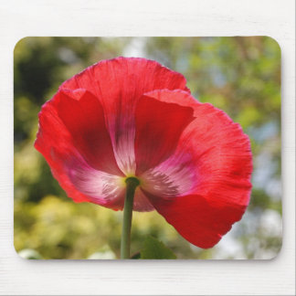 Red poppy mousemats