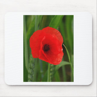 Red poppy mousepad