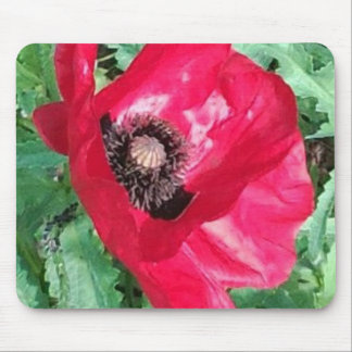 Red Poppy Mousepad