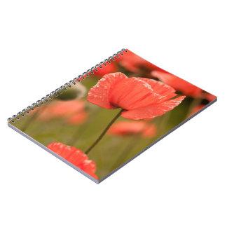 Red Poppy Notebooks