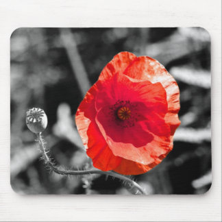 Red Poppy on Black and White Mouse Pad
