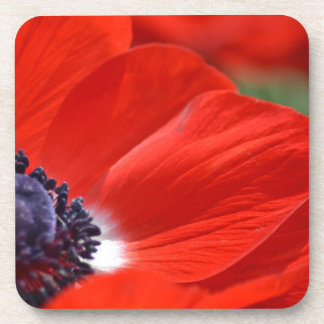 Red Poppy Spring Floral Coasters