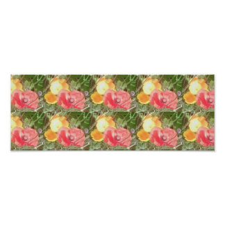 Red Poppy & Yellow Flower Photo Strip Value Poster