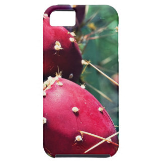 Red Prickly Pear iPhone 5 Case