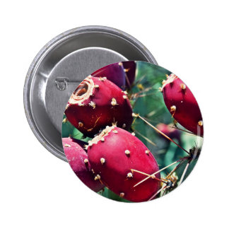 Red Prickly Pear Pin