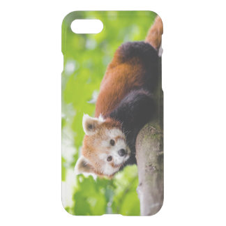 Red Racoon iPhone 8/7 Case