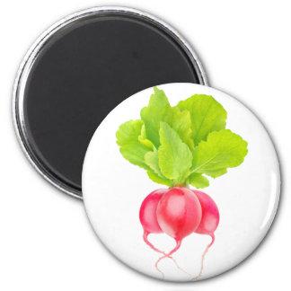 Red radishes magnet