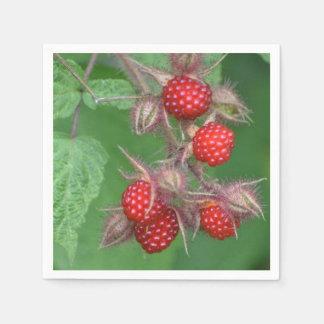 Red Raspberries Paper Napkin