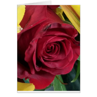 red red rose card