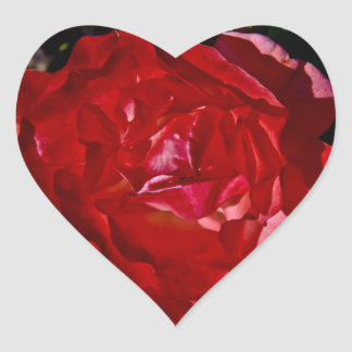 Red Red Rose Heart Sticker