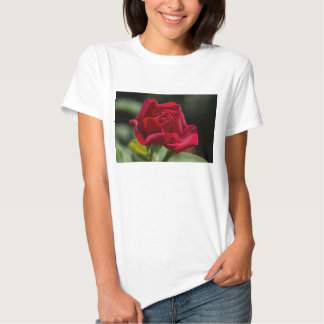 Red Red Rose Shirts
