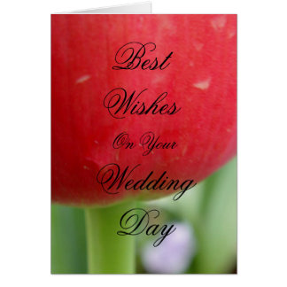 Red Red Tulip Greeting Card