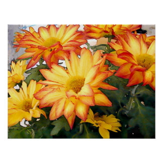 Red Rimmed Gold Mums Poster